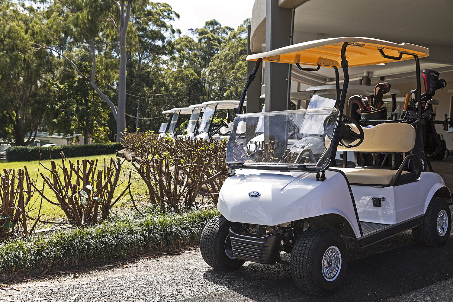 golf-cart-group-course-01