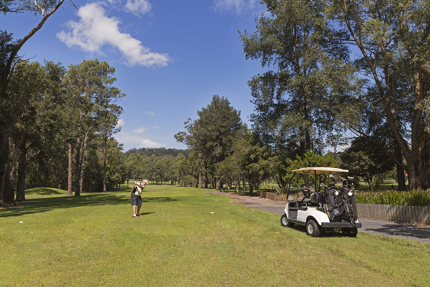 golf-cart-group-course-02