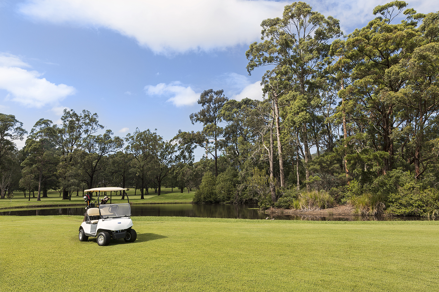 golf-cart-group-course-03